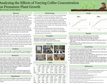 Analyzing-the-Effects-of-Varying-Coffee-Concentration-on-Premature-Plant-Growth-1432x1080