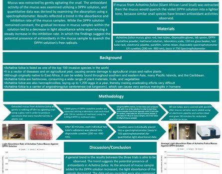 Examining-the-Efficacy-of-Achatina-fulica-Mucus-Against-DPPR-Free-Radicals-764x1080
